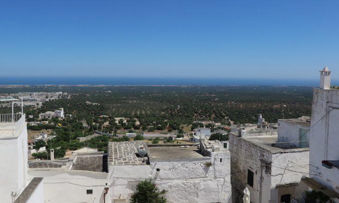 町の周りに広がるオリーブ畑とアドリア海
